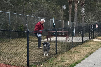 Dog Park Area at Carrabelle RV Resort